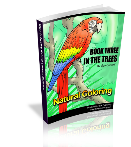 In The Trees Colouring Book Three