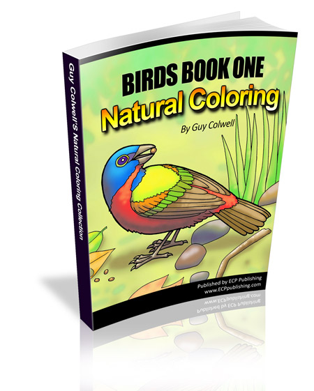 birds colouring book, birds coloring book
