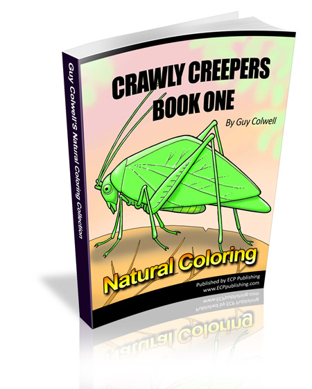 crawly creepers colouring book one