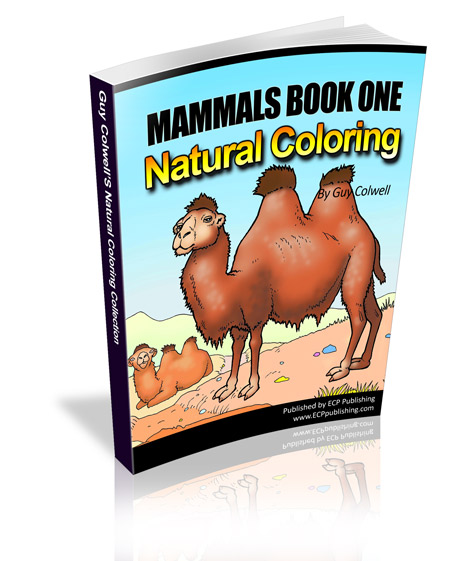 mammals colouring book one