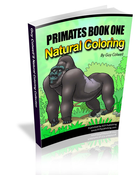 primates colouring book