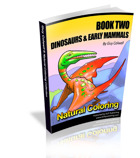 dinosaur colouring book two