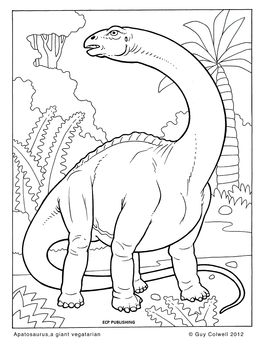 dinosaur colouring pages animal coloring pages for kids