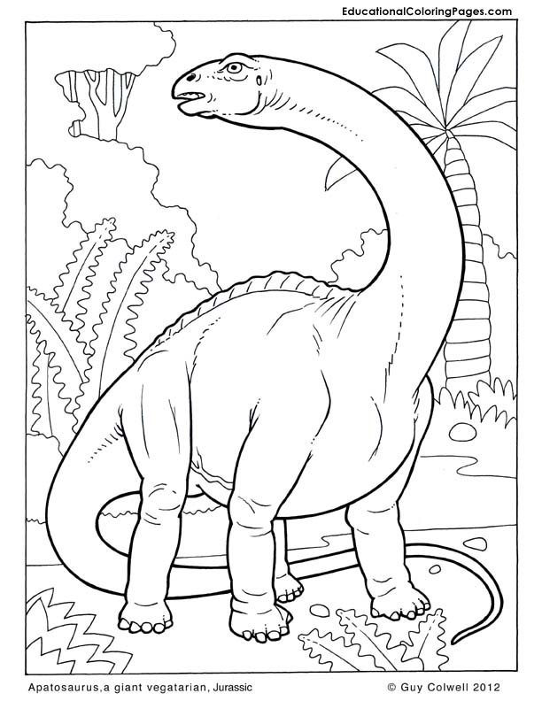 Apatosaurus coloring pages, dinosaurs coloring pages, jurassic coloring