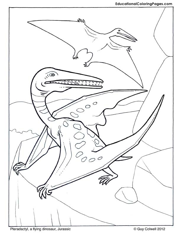 Pteradactyl coloring pages, dinosaur coloring pictures