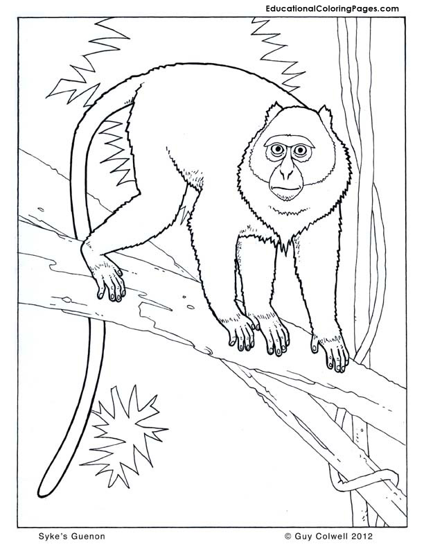 Howler monkeys colouring pages page 2 for Howler monkey coloring page